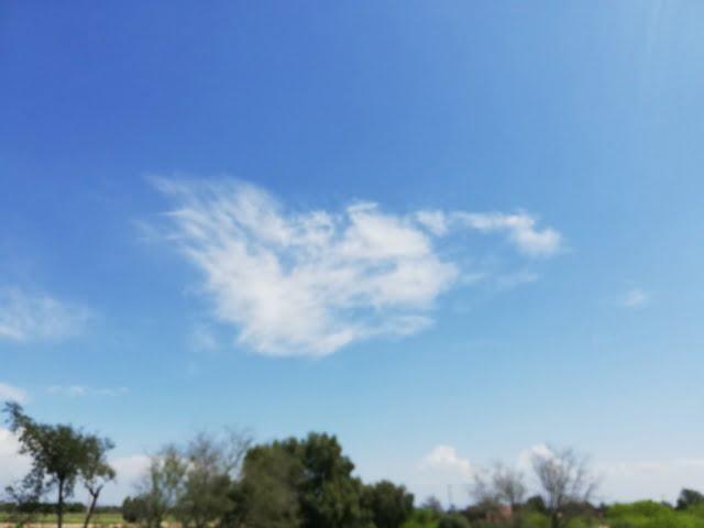 beautiful blue sky Green Grass