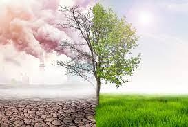 air quality 2021