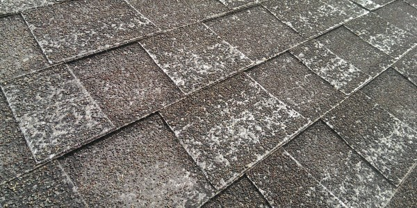 shingle granule loss inspecting a roof