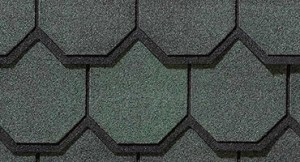 Carriage-House-Sherwood-Forest roofing Shingles