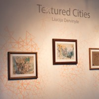 Textured Cities Exhibition by Liucija Dervinyte, Tijuana, Mexico