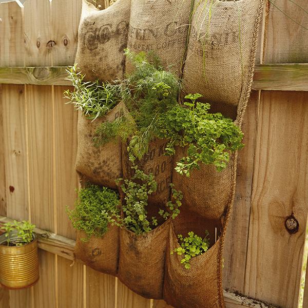 DIY Vertical Herb Garden Hallmark Ideas Amp Inspiration