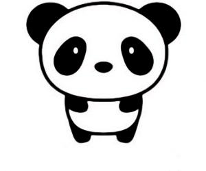 Panda para dibujar en funda transparente