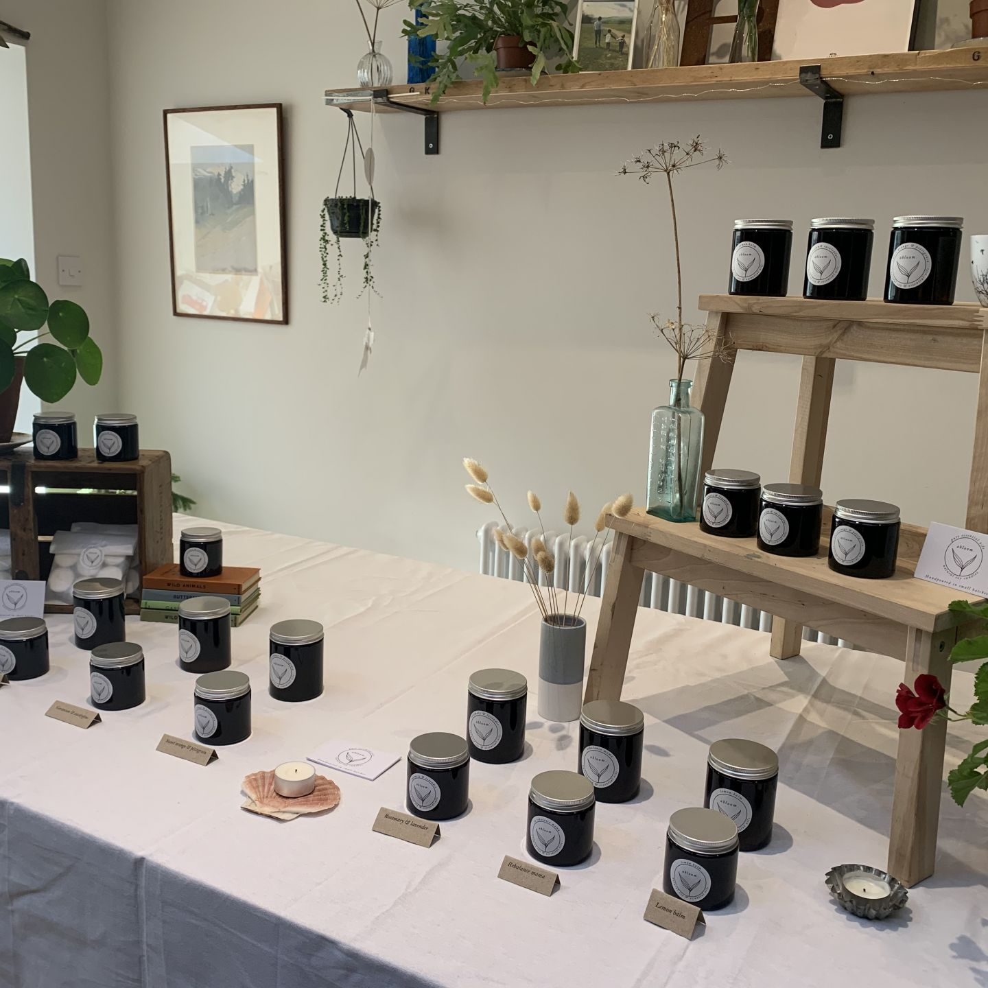 Member Profile - Abloom Candles
