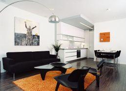 decorar-un-salon-con-muebles-negros-3