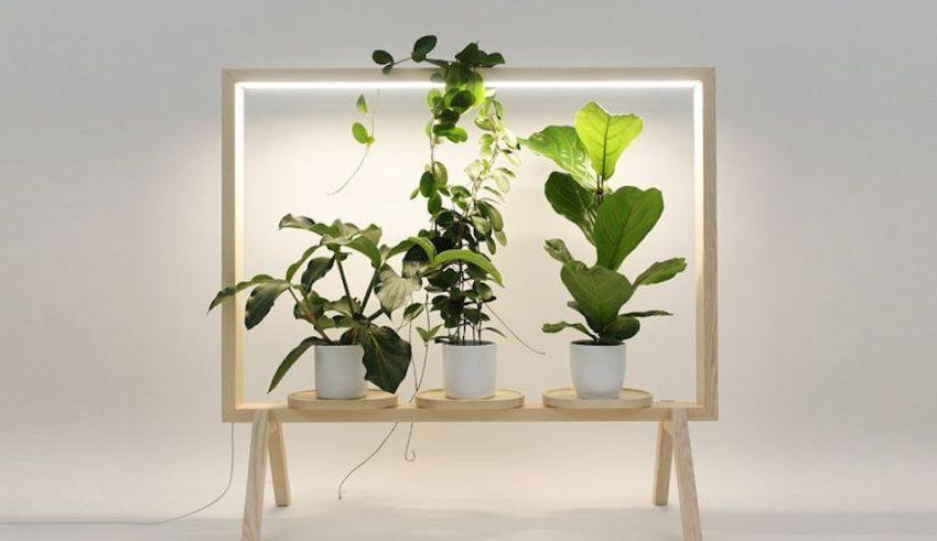 Limbus GreenFrame