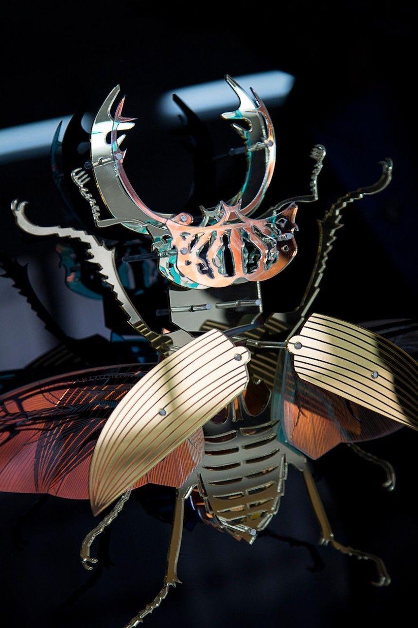diseño escarabajo
