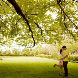 Ideas Imprescindibles ecologia emocional
