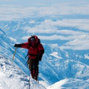 albert-bosch-aventura