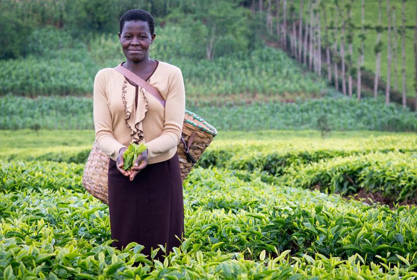fairtrade-igualdad-mujer
