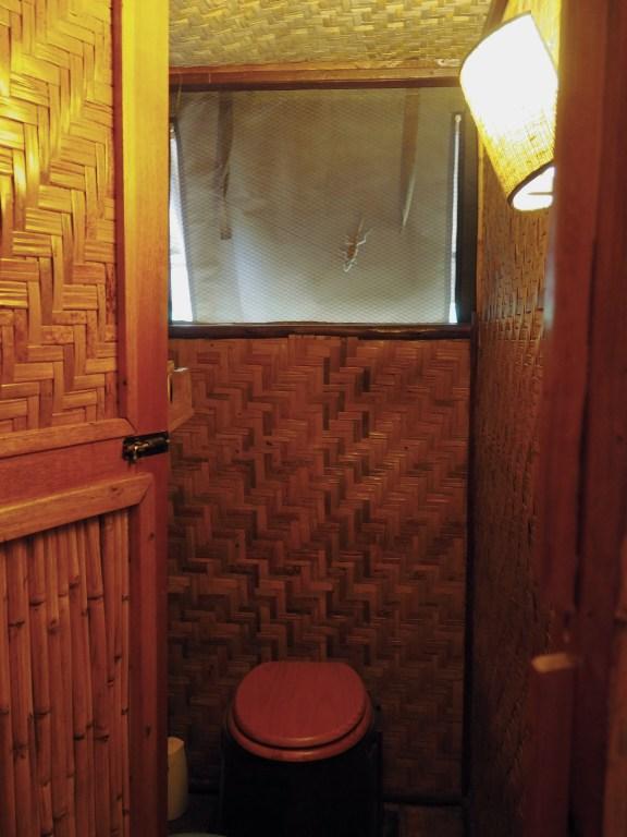 A lizard friend visiting the bathroom in our cabin at Queen Elizabeth Bush Lodge in Uganda