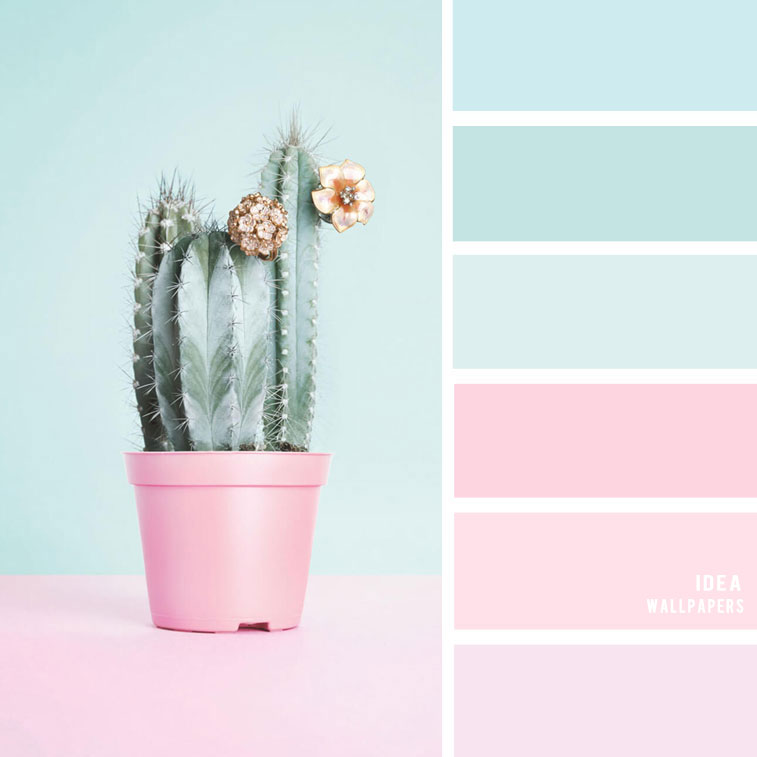 19 The Perfect Pink Color Combinations { Blush + light blue + Mint}, blush and mint color palette, blue and blush colour palette #color #colorpalette