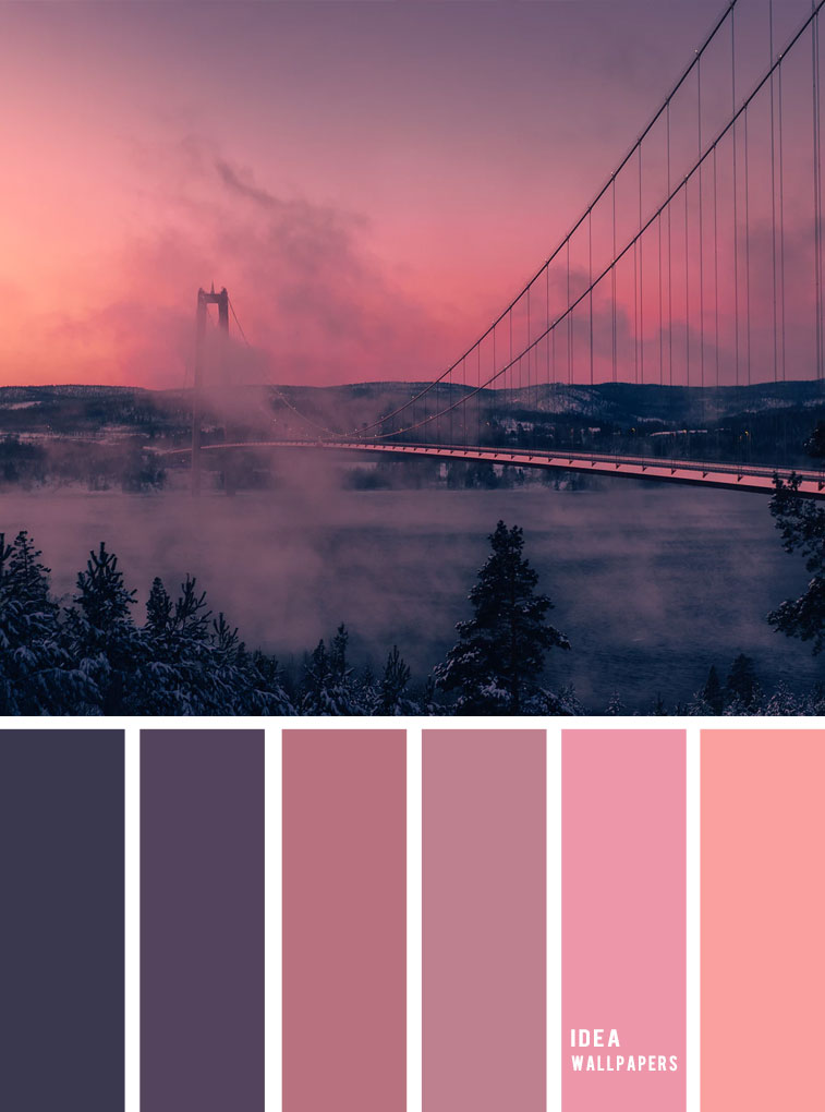 Mauve , blue grey and pink hues ,color schemes, pink and black color palette, colour palette #color #colorpalette