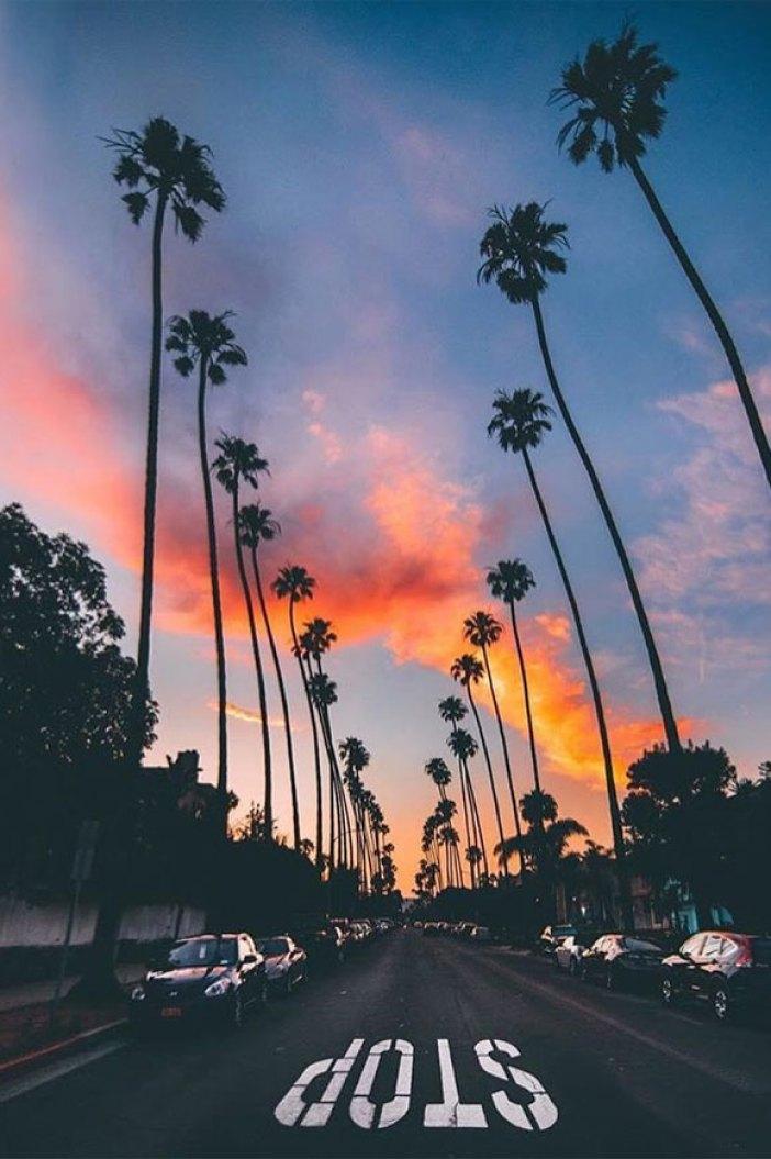 100 Beautiful iPhone wallpaper ,Beautiful sea iPhone wallpaper,ead to the beach iPhone wallpapers, Evening sky iphone background, iphone background, summer ,flower #california