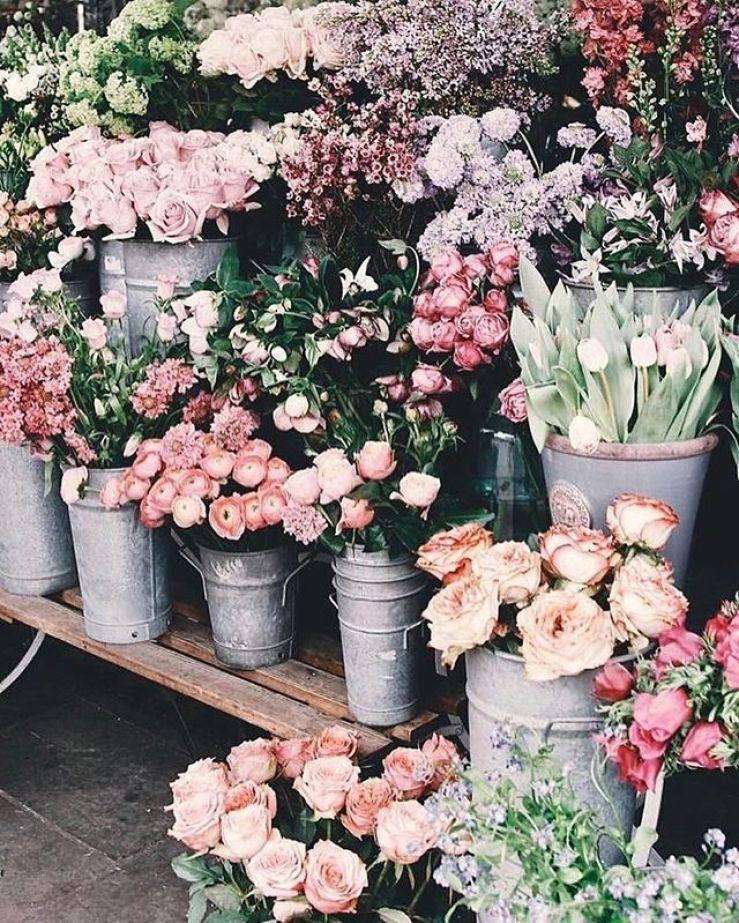 Flowers displayed in flower market