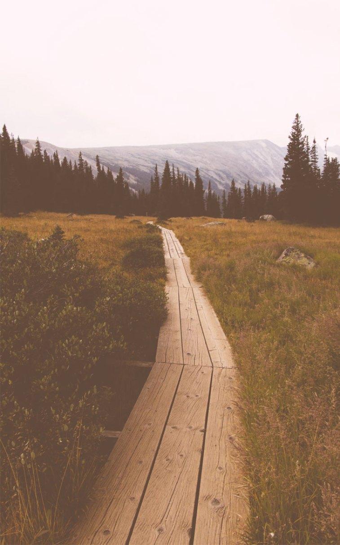 Beautiful landscape, long bridge across field #wallpaper #background