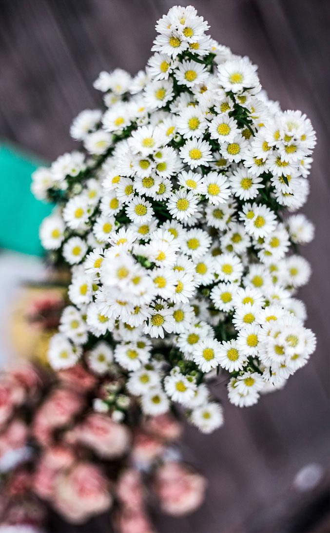 10 Beautiful Big Bunch Of Flowers For Phone Wallpaper