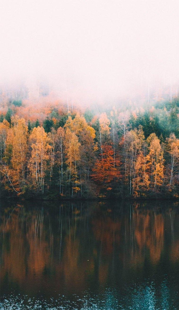 Spectacular seasonal colours - Autumn leaves at Lake