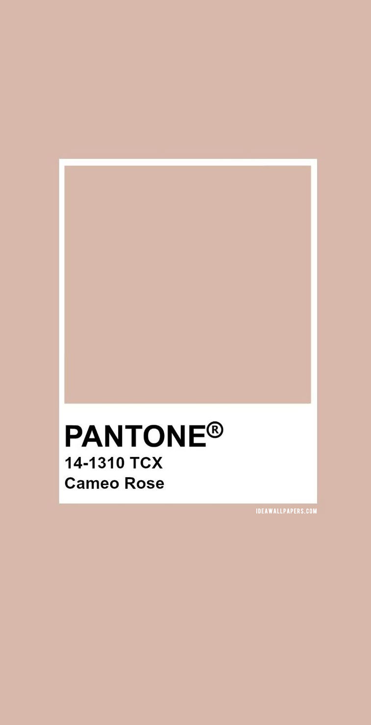 Pantone Cameo Rose : Pantone 14-1310 #color #pantone #neutral #colors