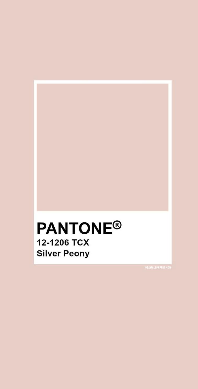 """Pantone 12-1206 - Pantone Silver Peony #color #pantone"