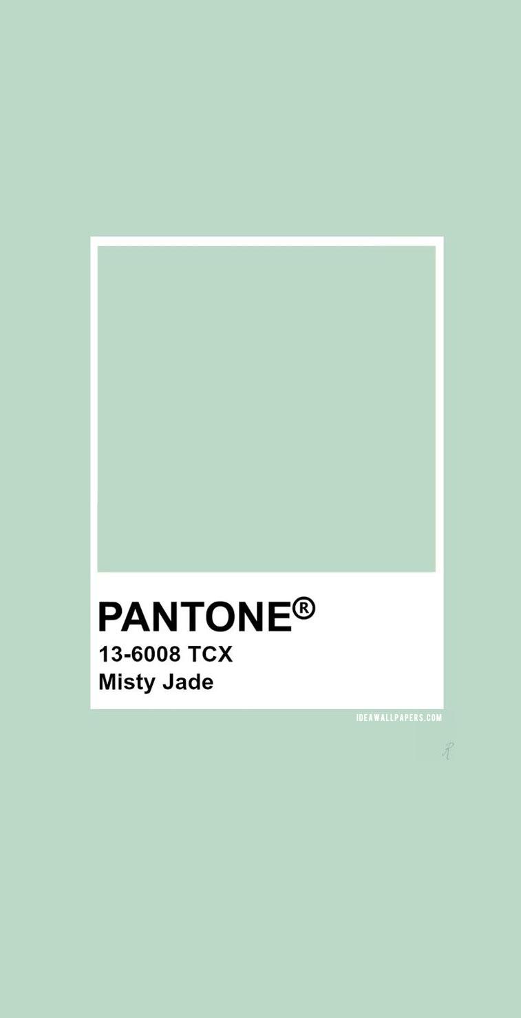 Pantone Misty Jade : Pantone 13-6008 color #color #pantone #colorinspiration