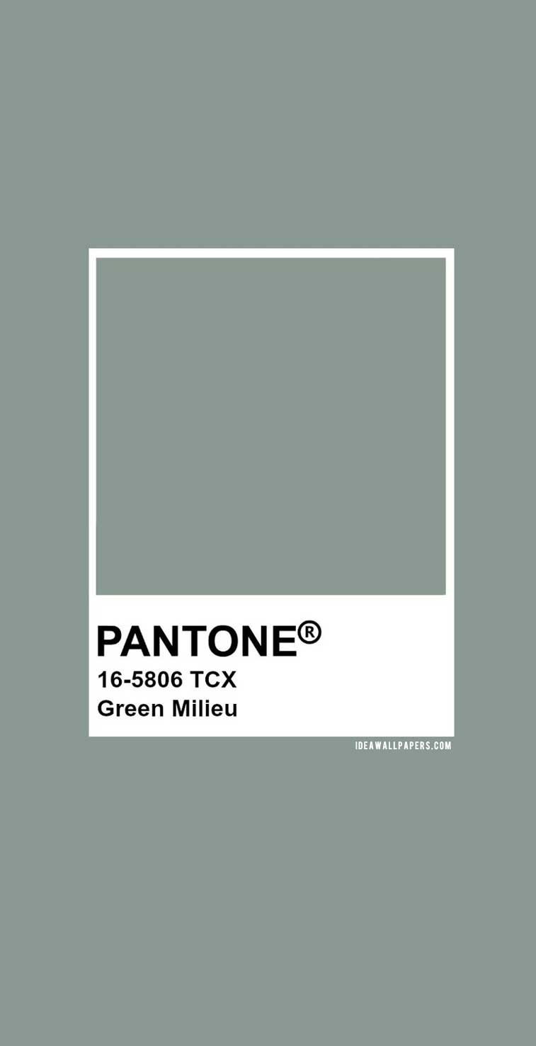 Pantone Green Milieu : Pantone 16-5806 #color #green #pantone
