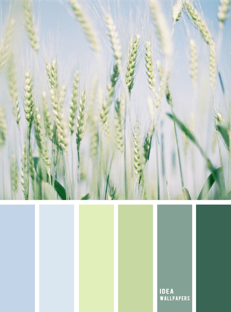 Color inspiration : Green and light blue sky #color #colorinspiration #pantone #green #blue