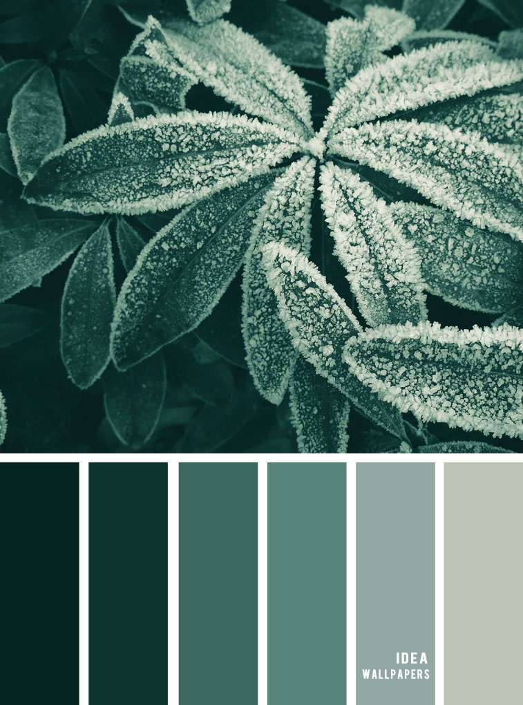 Green combination #color #colorinspiration #pantone #winter
