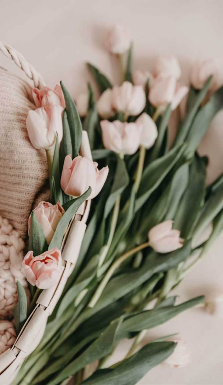 Love these 12 Very pretty iphone Xs wallpapers - floral iphone wallpaper #wallpaper flower iphone wallpaper #background #iphonexs Peonies photo
