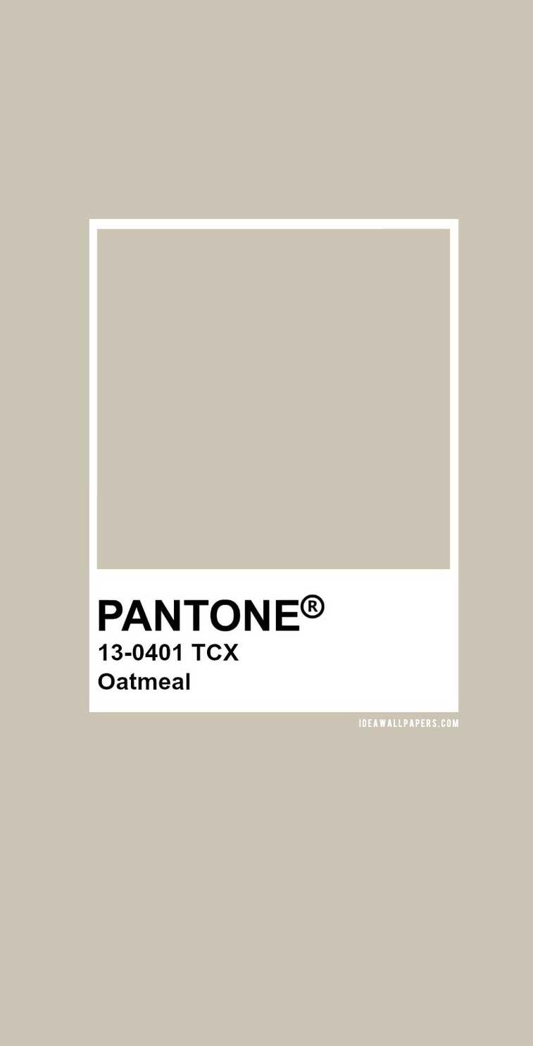 Pantone Oatmeal : Pantone 13-0401 #color #pantone