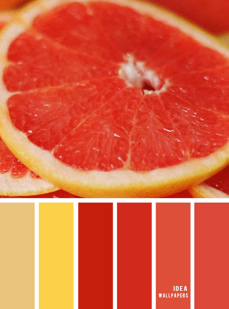 Colour Palette : Yellow Terracotta and orange red hues #color #pantone #orange #yellow