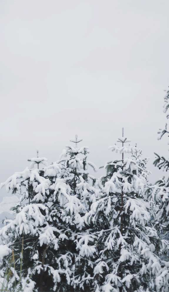 winter iphone wallpaper, iphone wallpaper, snow wallpaper, iphone wallpaper winter, winter background, winter iphone background, winter aesthetic, snow, winter background iphone