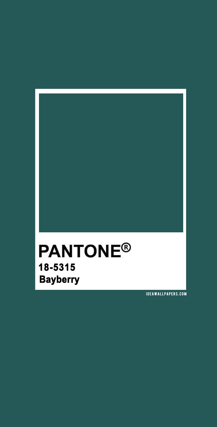Pantone Bayberry : Pantone 18-5315 Bayberry, pantone bayberry , pantone green #color #pantone pantone 2020, pantone color, pantone color 2020, pantone clothing, pantone palette, pantone paintpantone color of the year, pantone color of the year 2020, pantone colour of the year 2020
