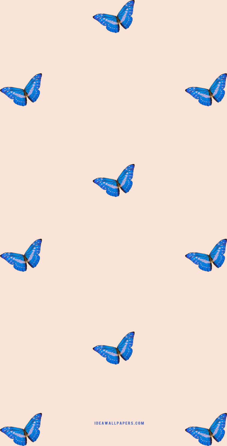 butterfly iphone wallpaper, butterfly iphone background , spring iphone wallpaper, butterfly drawing, iphone wallpaper butterfly, butterfly iphone background #butterfly #iphonewallpaper butterfly on peach background