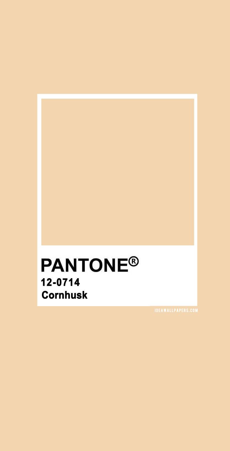 Pantone Cornhusk : Pantone 12-0714 TCX Cornhusk, pantone cornhusk, beige #color #pantone pantone 2020, pantone color, pantone color 2020, pantone clothing, pantone palette, pantone paintpantone color of the year, pantone color of the year 2020, pantone colour of the year 2020