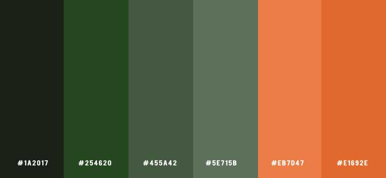 Green And Terracotta Color Scheme Color Palette 155 Idea Wallpapers Iphone Wallpapers Color Schemes,How To Organize Bookshelf