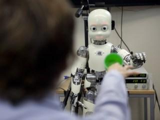 Interaktion zwischen PD Dr. Katherina Rohlfing mit dem Roboter iCub