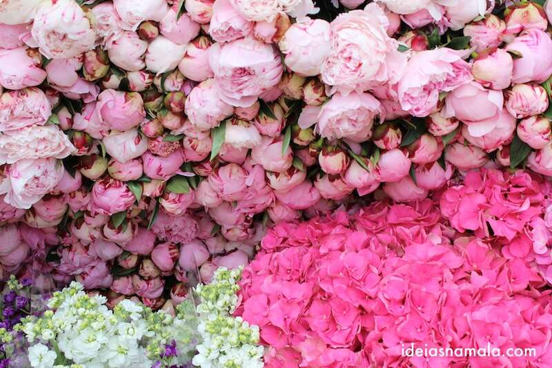 Flores na Columbia Road