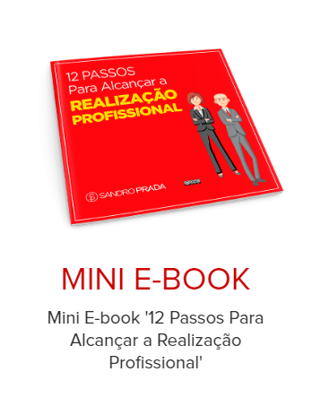 mini ebook