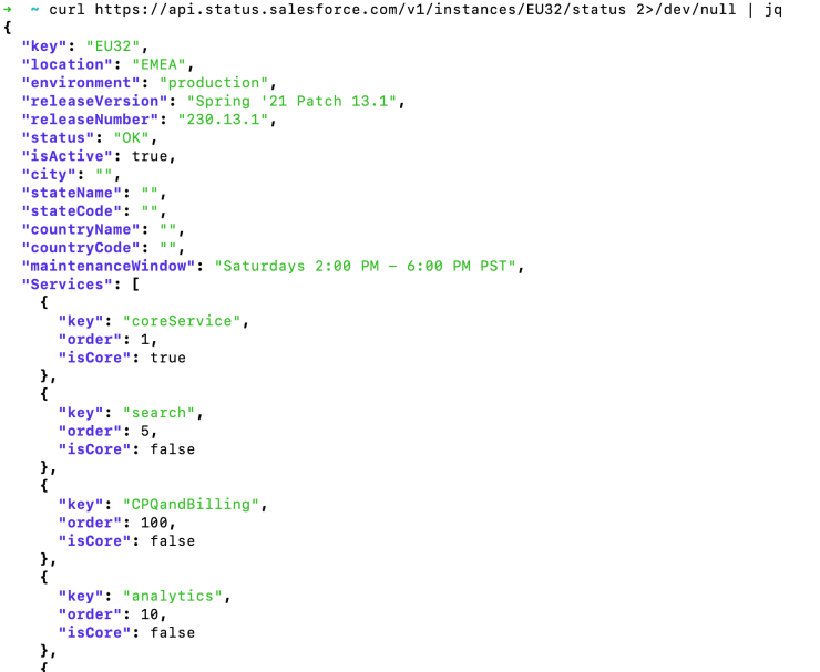 Output of a console, with neatly formatted JSON text