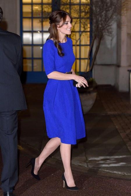 royal blue Saloni dress