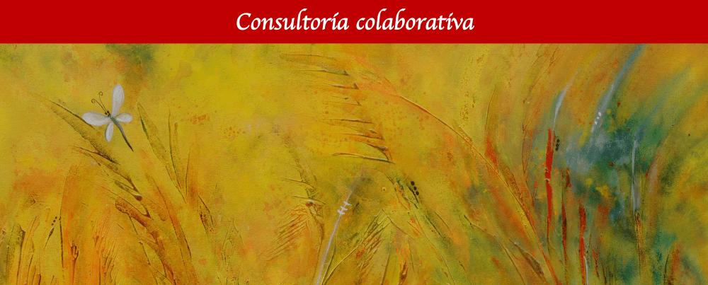 Consultoría colaborativa Identidad y Desarrollo