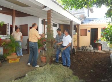 Foto plantando en oficina, La Unión