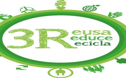 La importancia del reciclaje: aprende las bases para reciclar la basura.