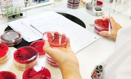 Une firme israélienne met au point une puce spéciale pour les tests sérologiques