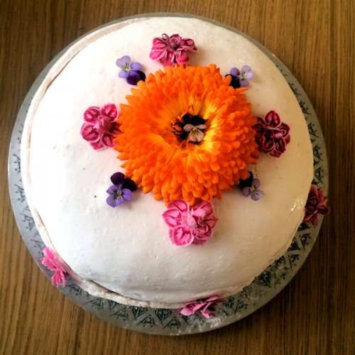 stinkers_birthday_cake-500x500