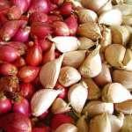 Hamdi Humaedi Naik Haji Dari Bisnis Jual Bawang Merah Dan Bawang Putih