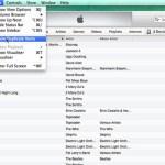 iTunes 11, Lagu, Tips iOs