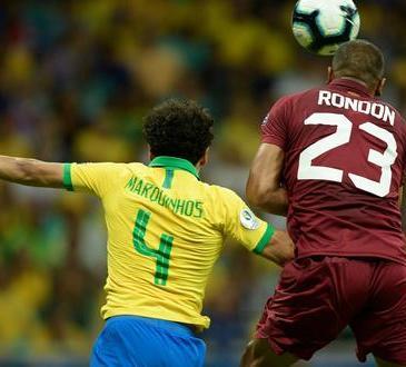vinotinto brasil