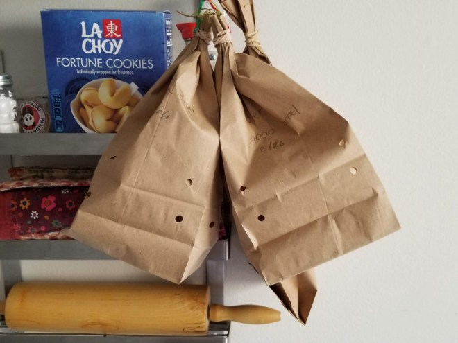 Drying Herbs in Paper Bags